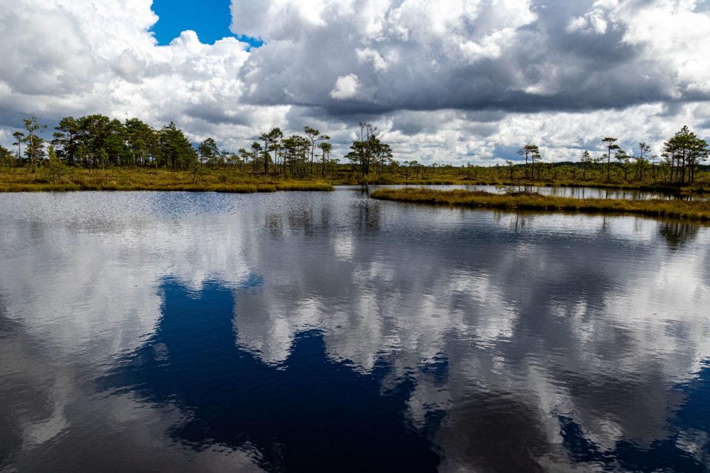 Moorsee1