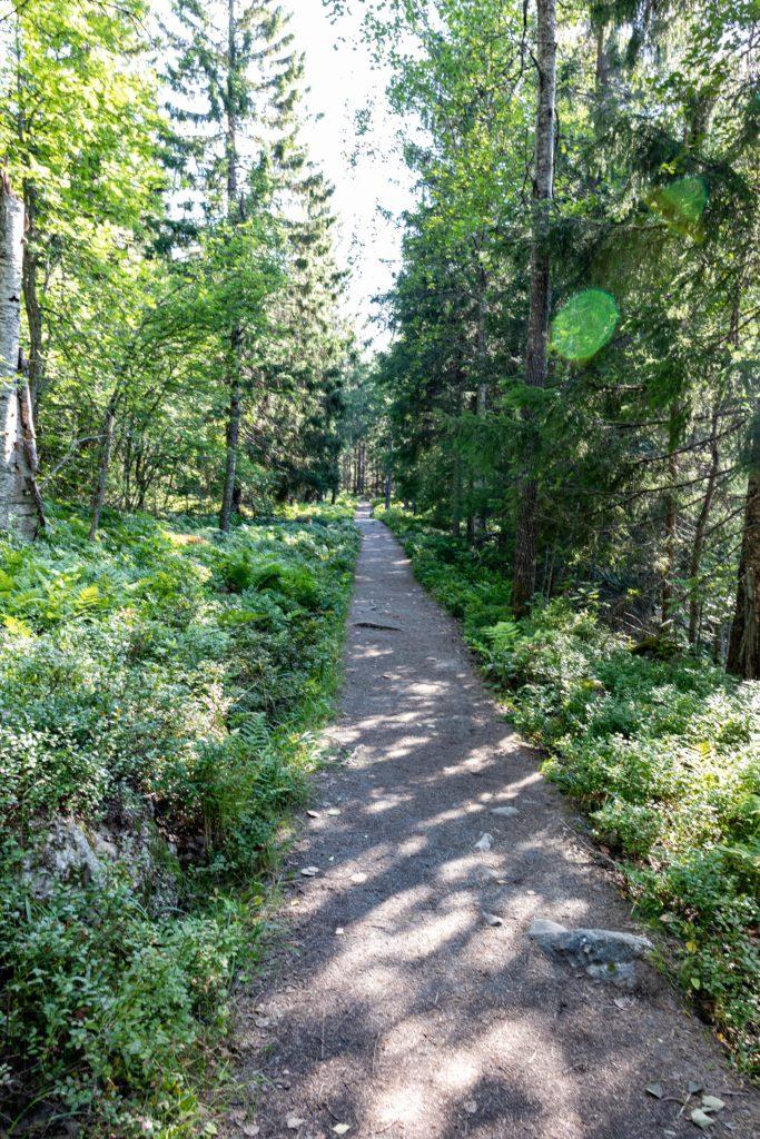 Wanderweg Koli