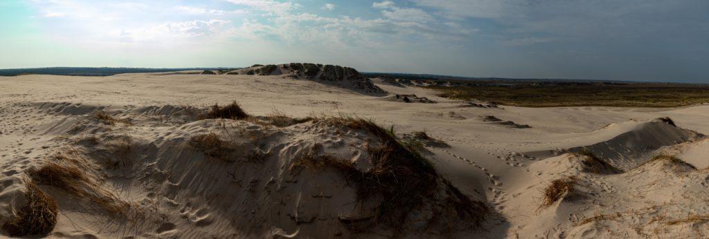 Sanddüne Rabjerg Mile