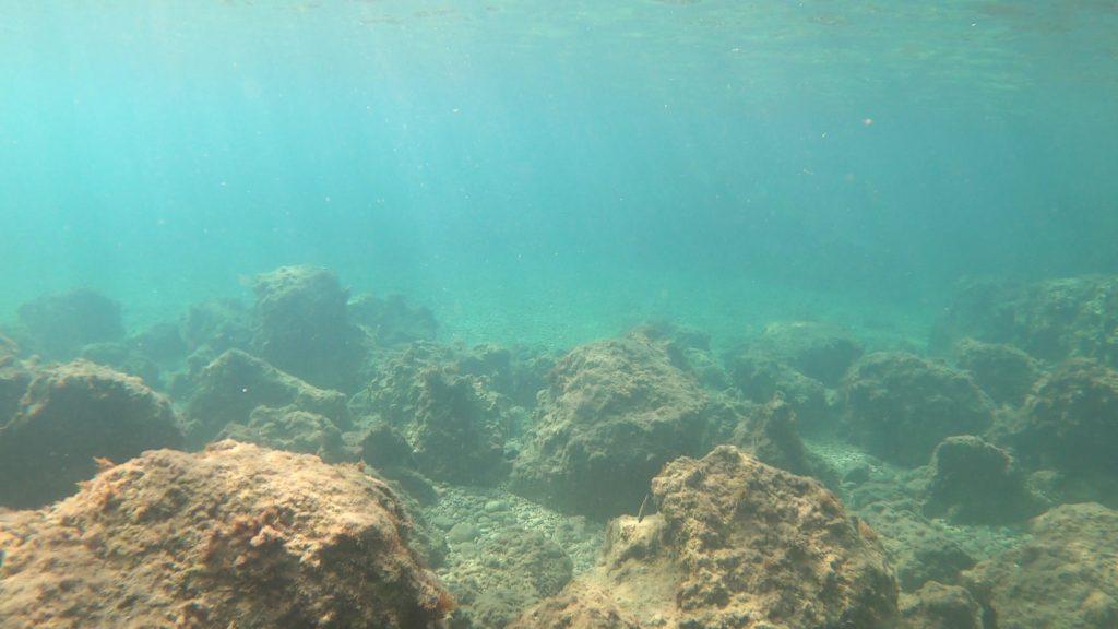 Unterwasserwelt Ligia